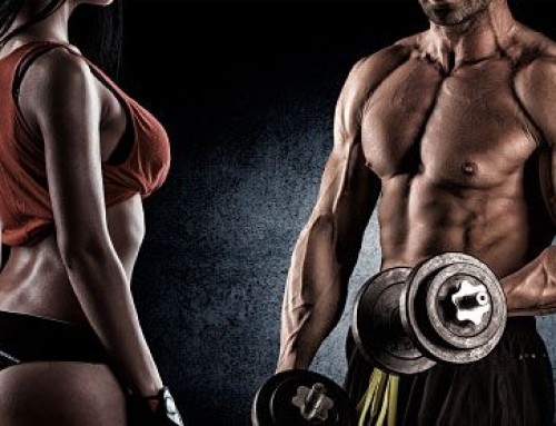 THE VALUE OF A GREAT TRAINER – WHAT YOU SHOULD LOOK FOR…